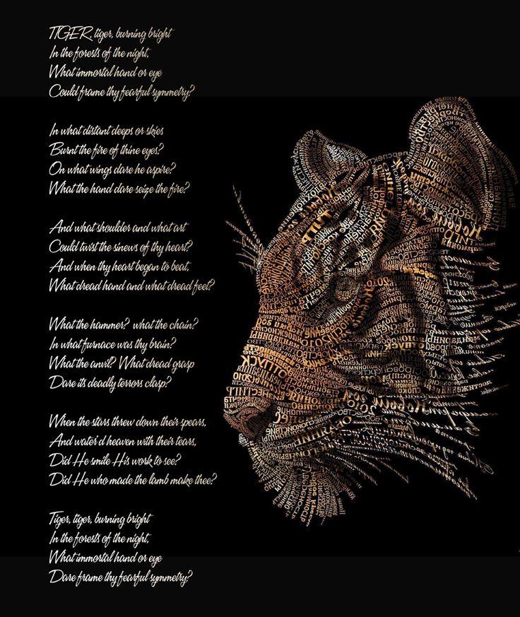 Tiger tiger burning bright.. .