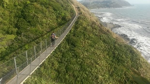 Easily accessible, the newest section of the Te Araroa trail offers amazing views and a decent workout.
