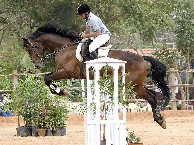 pondicherry-equestrian-challenge-pec-2014 #GrabYourDream #Adventure #Travel #Contest