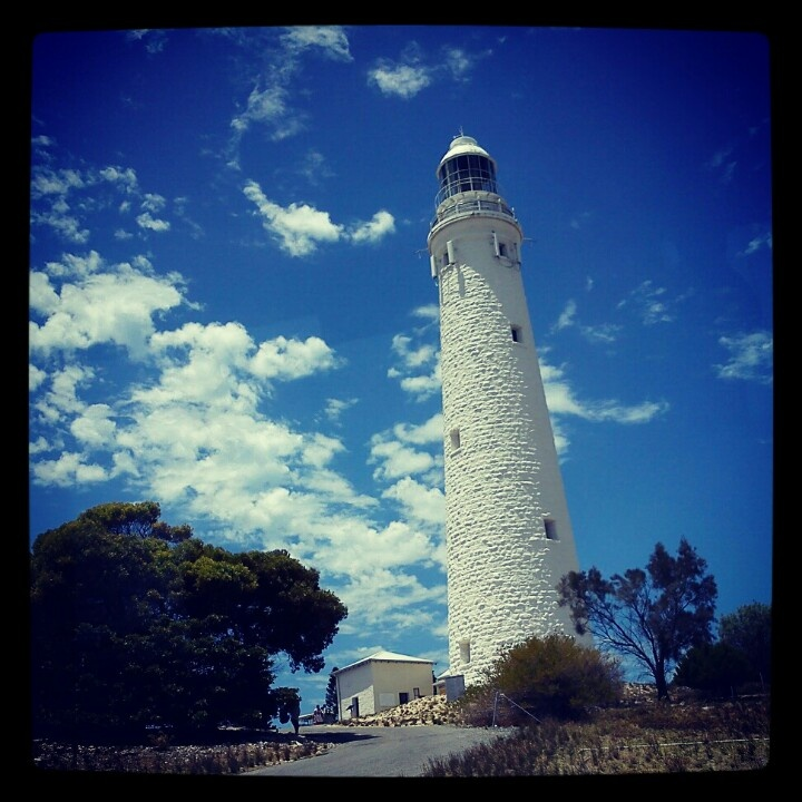 The light mouse at Rottnest Island
