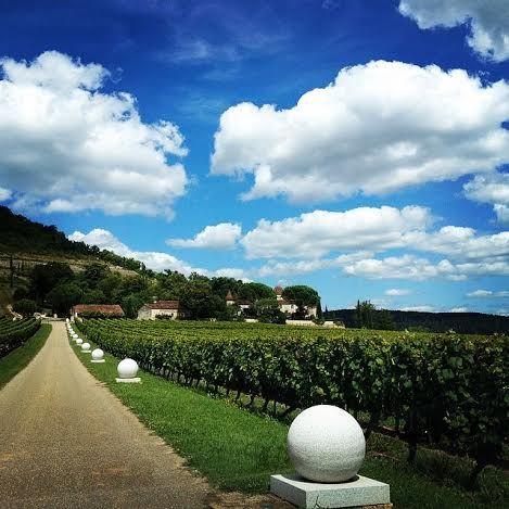Château de Cayx château du prince du Danemark. Cahors, winnery, lovers, Denmark https://instagram.com/winetourbooking/