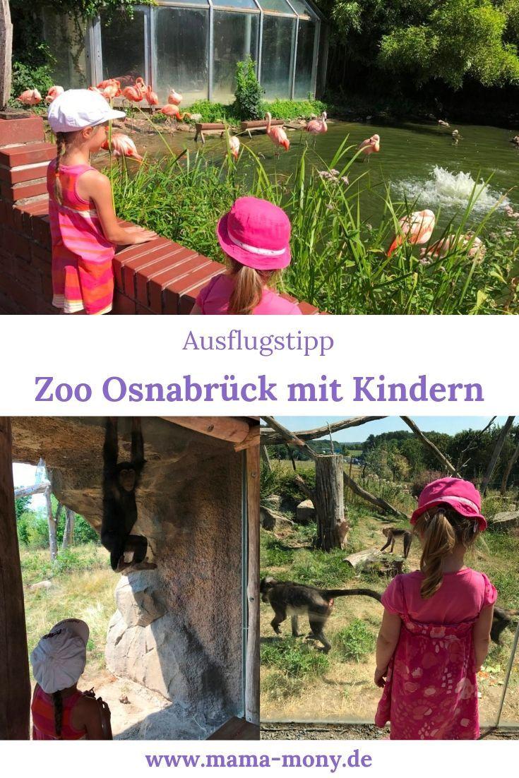 Zoo Osnabruck Ausflug Mit Kindern Zoo Osnabruck Ausflug Und Ausfluge Mit Kindern