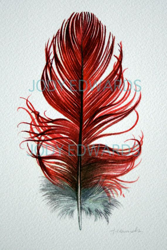 Feather Painting  Red Amazon Parrot / Macaw feather  by jodyvanB, $35.00