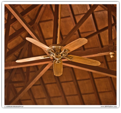 80 best ceiling fan images on pinterest ceilings ceiling fan we were waiting for the meal at coffee blossom restaurant club mahindra resort coorg aloadofball Images