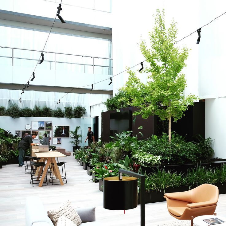 Display Suite for St Boulevard on 601 St Kilda Road, Melbourne located inside an awesomely green & light flooded atrium space on site.   Architectural & Interior Design by Elenberg Fraser.