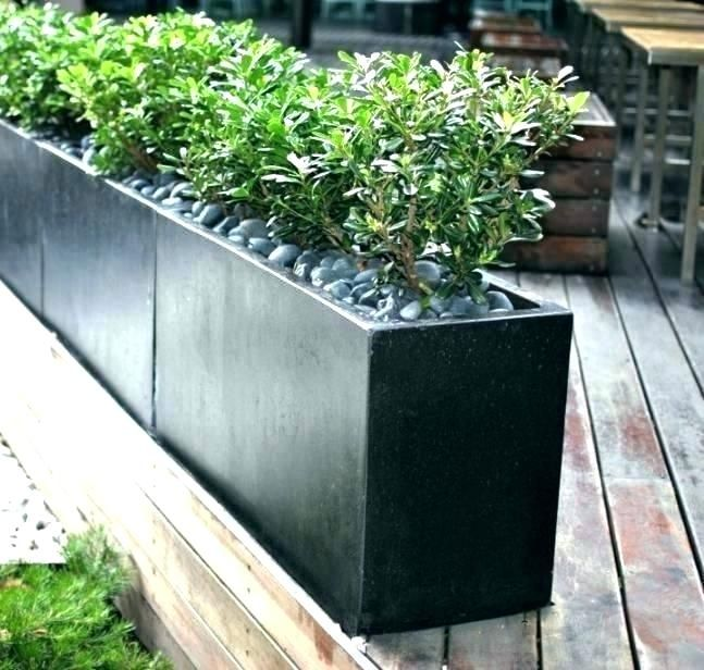 Image Result For Long Black Planter Box Outdoor Planters Concrete Garden Outdoor Pots