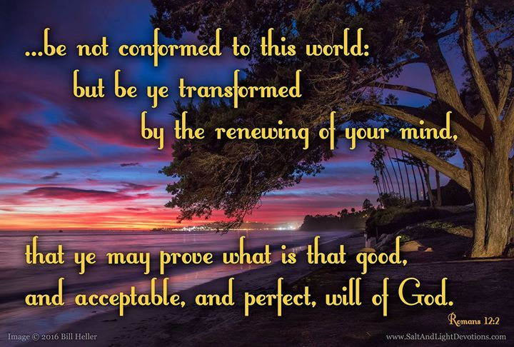 Therefore I urge you brothers and sisters in view of God's mercy to offer your bodies as a living sacrifice holy and pleasing to God-this is your true and proper worship. 2 Do not conform to the pattern of this world but be transformed by the renewing of your mind. Then you will be able to test and approve what God's will is-his good pleasing and perfect will. --Romans 12:1-2 KJV    http://ift.tt/2dlIsJq  #Bible #inspirational