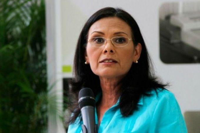 Hernández: Plan República está activado para seguridad de electores