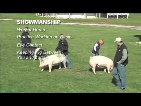 Exercise Programs / Showmanship - YouTube