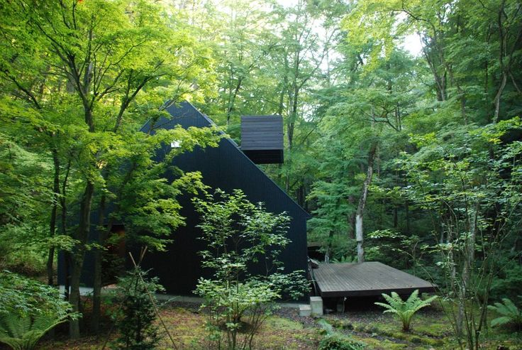 Go Hasegawa - House in a Forest