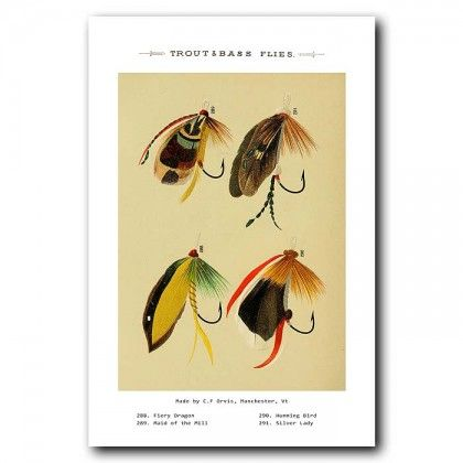 Trout and Bass Fishing Flies