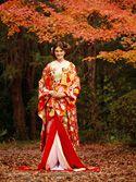 色打掛1106「手織り赤地吉祥文様慶長熨斗」/赤/レンタル和装