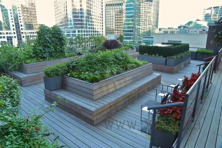 Wonderful raised bed idea that would work well for elder care facilities or for a gardener with some disability.