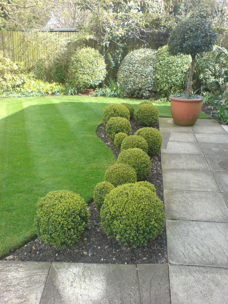 garden with balls of boxwood - Google pretraživanje