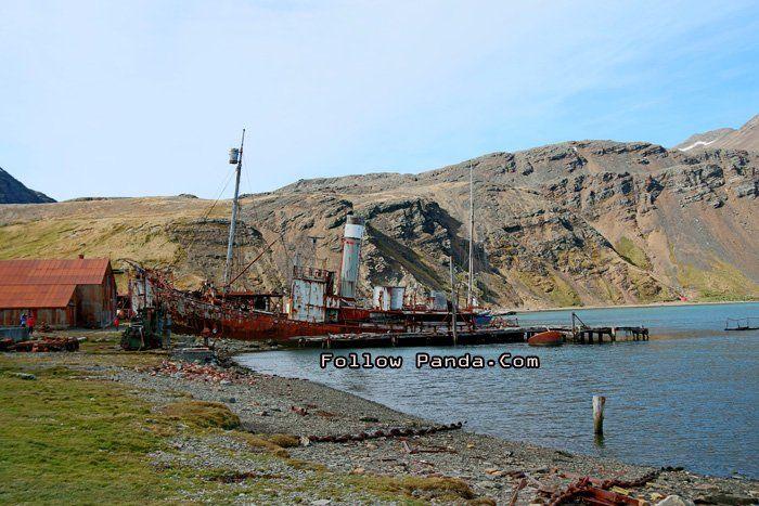 Whale-Catcher Ship in Grytviken Harbour (King Edward Cove) - South Georgia and the South Sandwich Islands - A&K Le Boreal Antarctica Cruise Trip | FollowPanda.COM