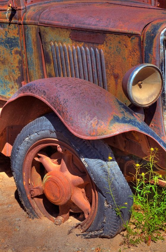 an old Ford  truck reclaimed by nature