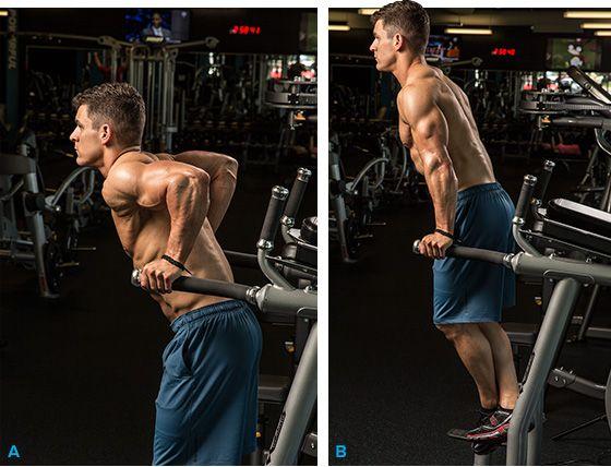 Bigger triceps?  Dips