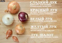 Lifter | 13 картинок, которые научат вас готовить. По-настоящему!