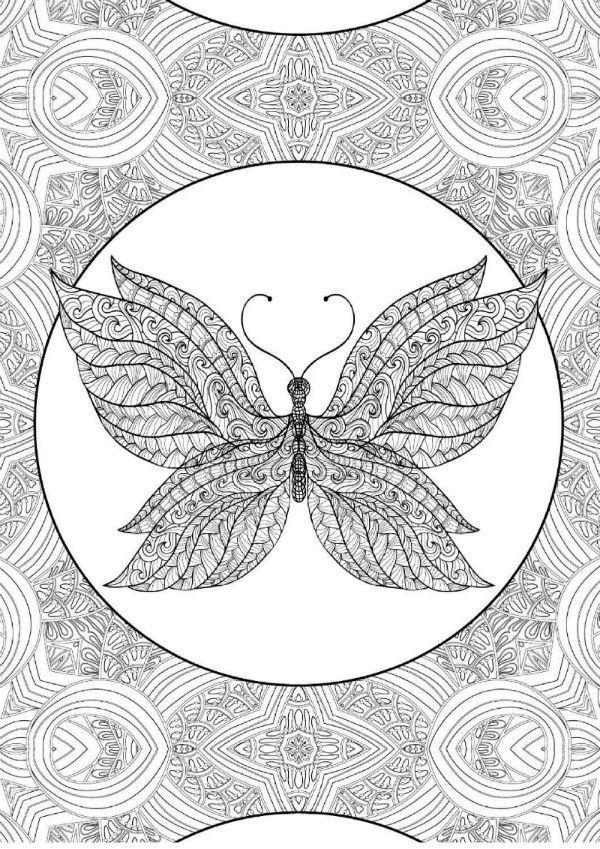 Раскраски-антистресс с изображением бабочек | МАМА И МАЛЫШ