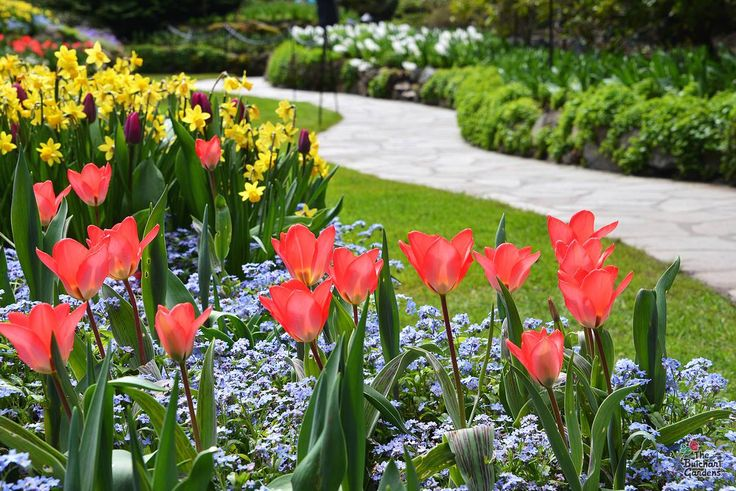 10 Things to Do in Victoria this May | Victoria British Columbia | Tourism Victoria