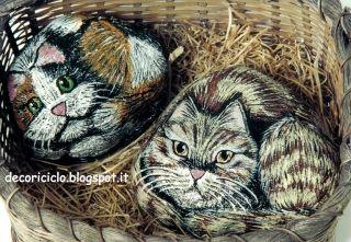 due gatti, uno pezzato e uno tigrato