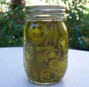 Excellent recipe for refrigerator pickled jalapeno peppers.  Great way to preserve all those jalapenos from the garden. Oh, and listen to the advice about wearing rubber gloves!!