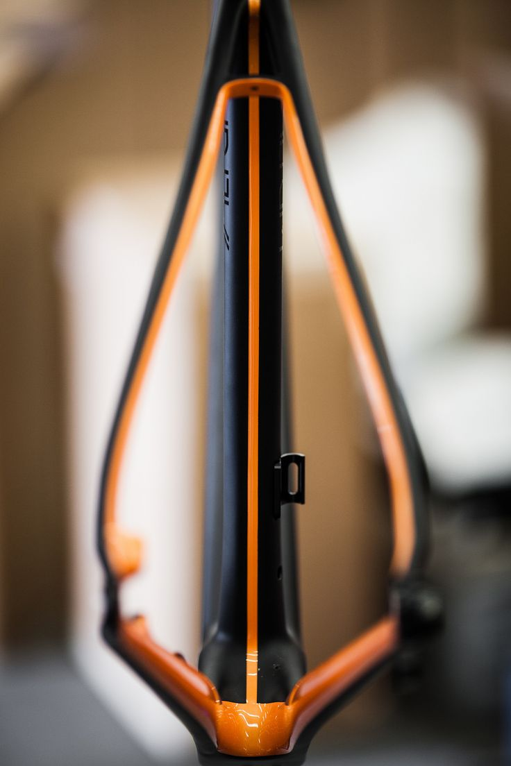 Altum Custom Stripe | by parleecycles                                                                                                                                                                                 More