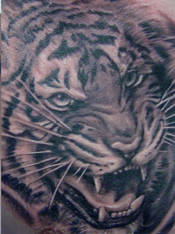 161 best tiger tattoos images on pinterest. Black Bedroom Furniture Sets. Home Design Ideas