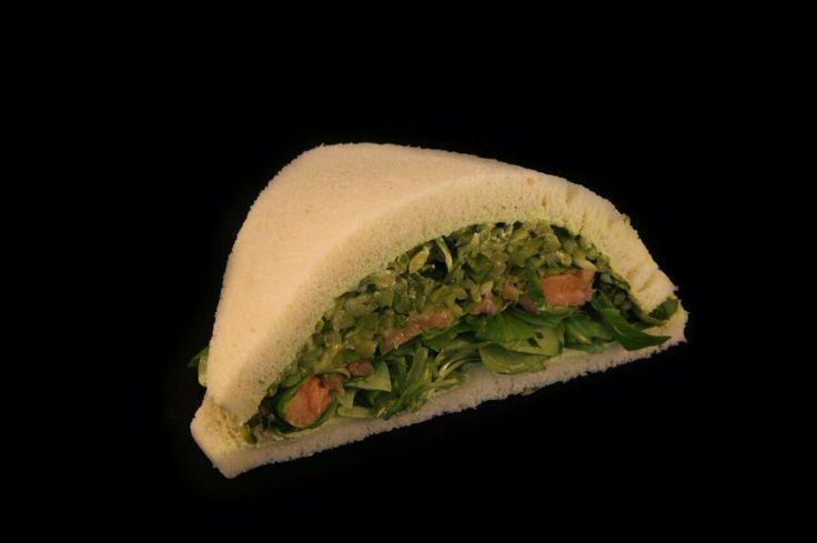 DUBLINO (salmone zucchine soncino crema alle erbe)