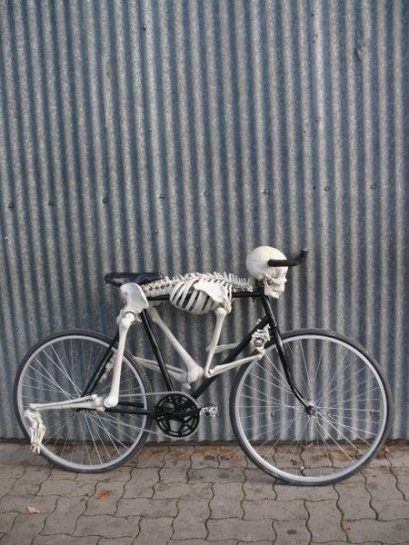 skeleton on bicycle - skeletons can definitely be in the dungeon