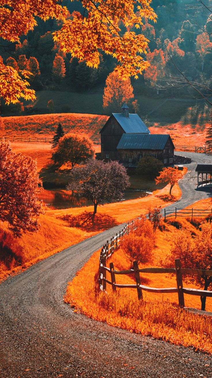 Autumn Landscape iPhone wallpapers / lock screen
