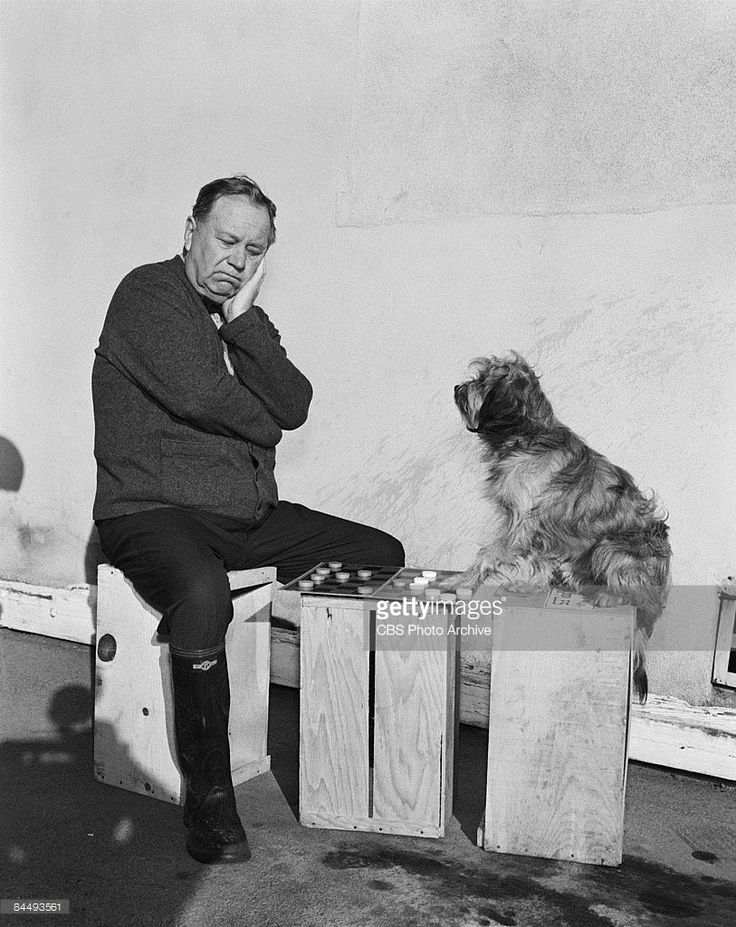 American actor Edgar Buchanan (1903 - 1979), as Joseph P. 'Uncle Joe' Carson and canine actor Higgins the Dog (1957 - 1975) 'play' a game of checkers on the set of an episode of the television show 'Petticoat Junction' entitled 'Kate Bradley, Girl Volunteer,' Los Angeles, California, January 6, 1965. The episode was orginally broadcast on February 9, 1965.