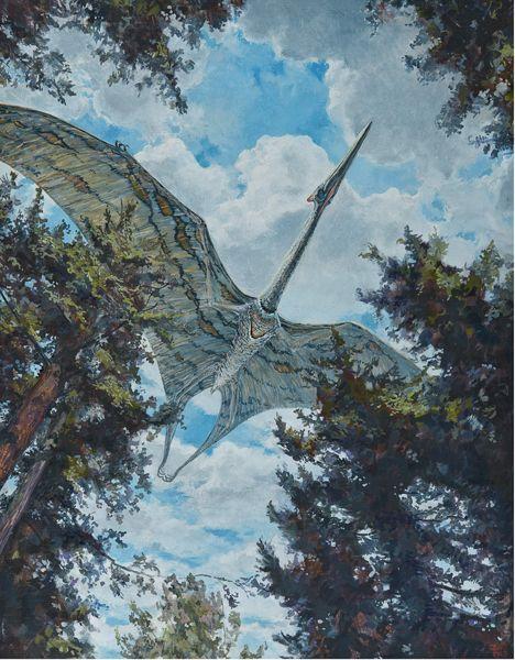 QuetzalcoatlusbyD.W. Miller | via Triassic ∆ Jurassic ∆ Cretaceous