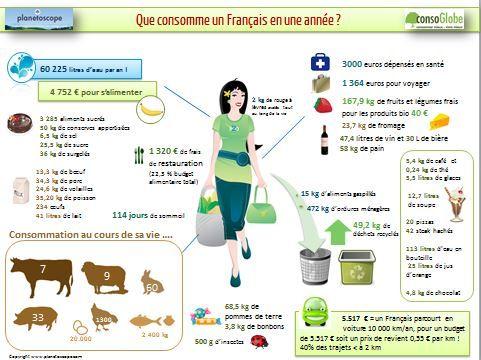 Consommation d'un français  via Heather Frackiewitz from http://www.consoglobe.com/consommation-annuelle-francais-cg