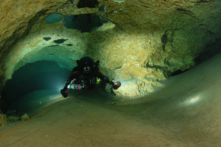37 Best Images About Cave Diving In Florida !!! On