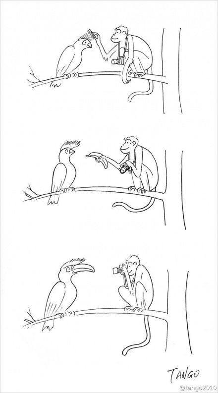 Фото: Смешные комиксы, которые зарядят позитивом на целый день