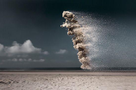 Sand Creatures: Photos by Claire Droppert | Inspiration Grid | Design Inspiration