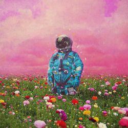 The Flower Field Astronaut