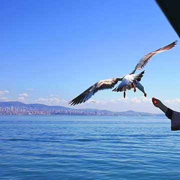 Things to do in Turkey, places to visit in Turkey and eveything you need to know about Turkey tourist attractions on tourist tube web.