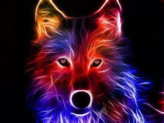 92 Best Cool Looking Wolves Images On Pinterest