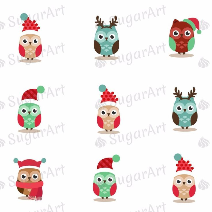Cute Christmas Owls - HSA051