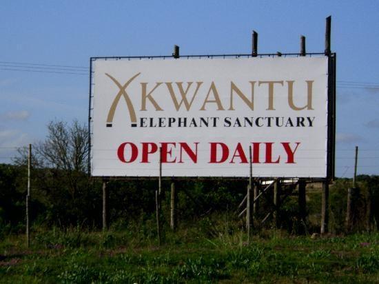 Kwantu Elephant Sanctuary.  Port Elizabeth