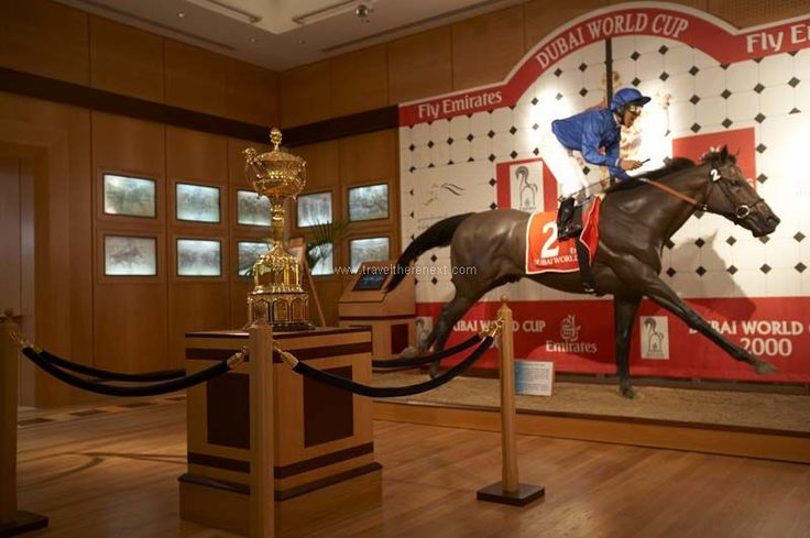 Dubai horse racing - Trophy cup on display in the middle of the room  #uae #arab #dubai #horseracing #middleeast #adventure #experience #fun #travel #traveltherenext
