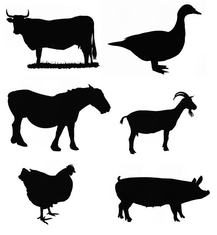 Mon école, c'est chez moi ...: Découverte du monde avec les animaux de la ferme