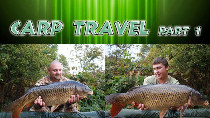 Рыбалка на карпа осенью. Бюджетная прикормка. Carp Travel #1