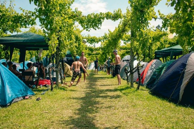 5 Hottest New Zealand Summer Festivals You Need To Know About Splore Where & where: 17-19 February at Tapapakanga Regional Park Price: $245 + booking fee What to expect: Splore is a boutique 3-day festival with a special emphasis on the community. Taking place on sacred land, this extravagant party introduces fresh energy and a new dimension to the ancient homeland of the tangata whenua Whanaunga and Ngati Paoa. For more info: http://www.splore.net  Rhythm & Vines When &amp...