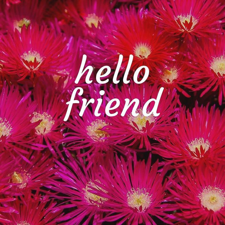 Hello Friend! Well it feels as though you are all friends as this business was started from a very personal place. So I just wanted to say a big hello and welcome to all the new people following us. It means so much to me that we are breathing life into Modern Australiana and the feedback so far has been just amazing.  And can you believe it? Just the other day we reached 1000 fans here and we could not have done this without you. Thank you! If you love what we are all about be sure to sign…