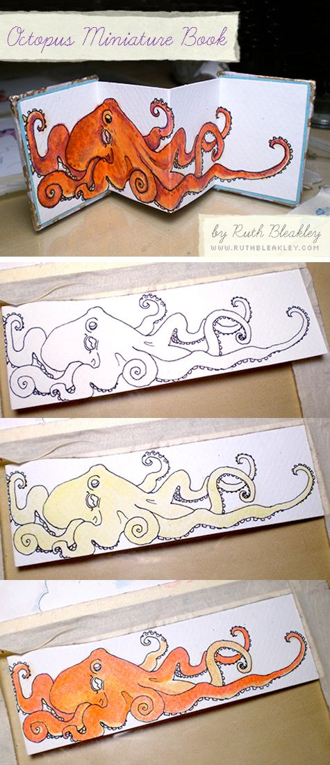 Illustrated Octopus Miniature Book by Ruth Bleakley