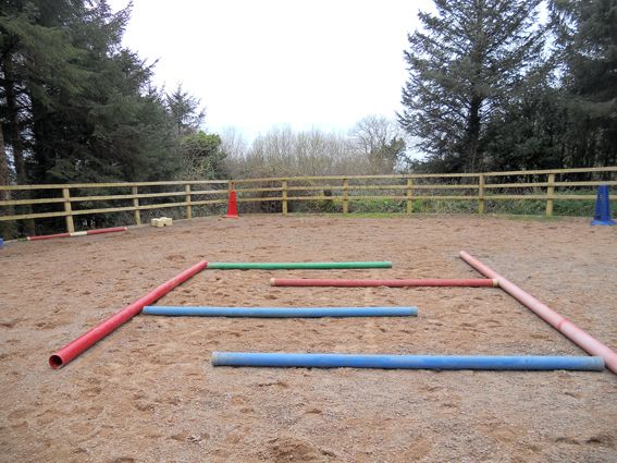 horse obstacle - Maze (this is not an obstacle, ride with me...I will show an obstacle)