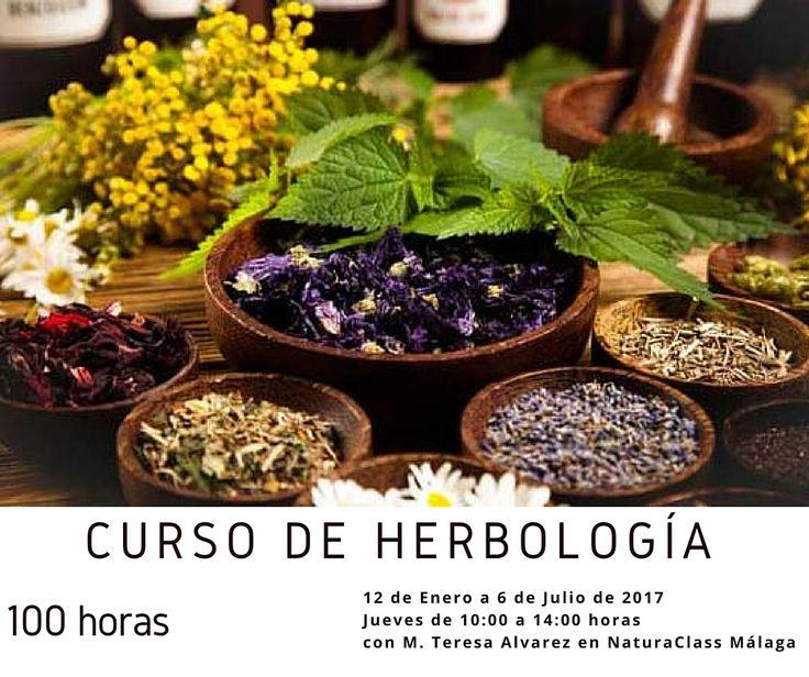 Completo curso de Herbología de 100 horas en NaturaClass en Málaga (Programa de Graduado en Naturopatía)
